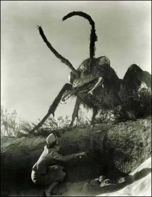 hormiga gigante