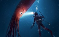 Relación entre los tamaños de un buzo y un calamar gigante (la escena no es real).