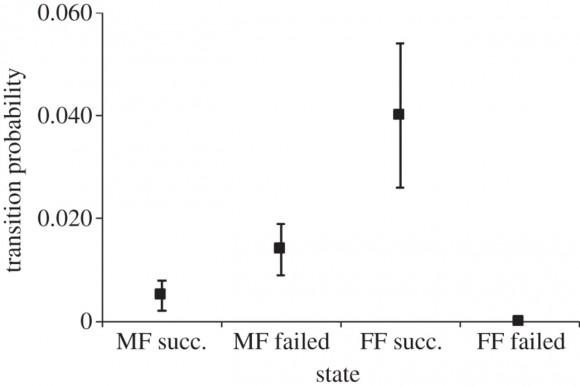 Probabilidad de transición de una modalidad de pareja a otra, dependiendo del tipo de pareja y del éxito (succ) o fracaso (failed) reproductor el año anterior