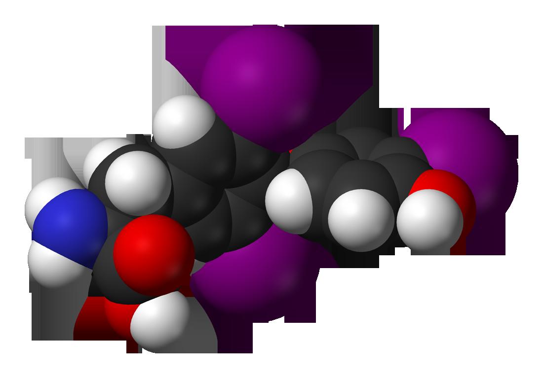 Tiroides de hormona ultrasensible alta estimulante la