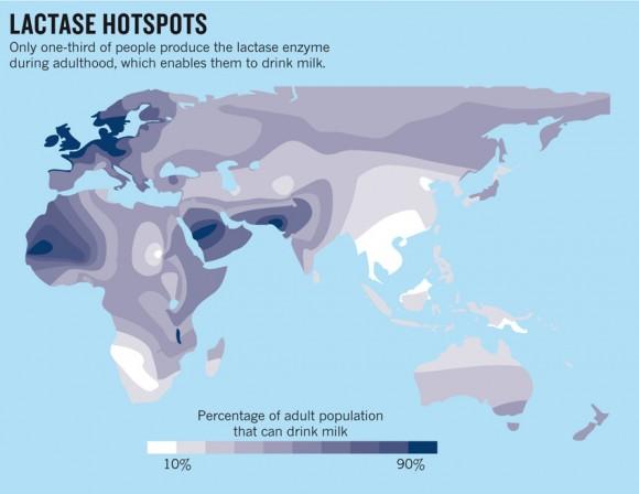 Distribución geográfica de la proporción de personas que pueden digerir lactosa